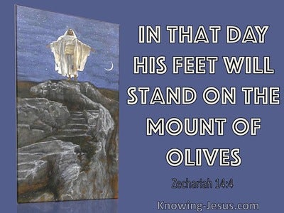 Zechariah 14:4 His Feet Will Stand On The Mount Of Olives (blue)