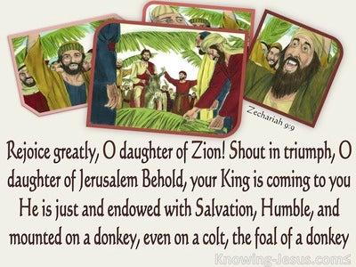 Zechariah 9:9 Behold Your King Is Coming (beige)