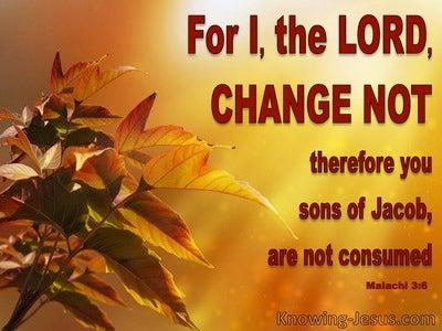 Malachi 3:6 The Lord Does Not Change (orange)
