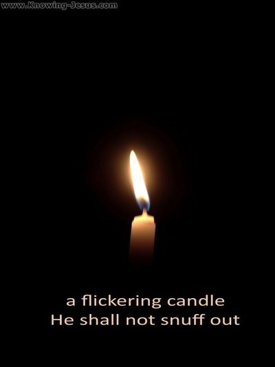 Matthew 12:20 A Flickering Candle He Will Not Snuff Out (black)