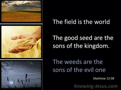 Matthew 13:38 The Field Is The World (black)