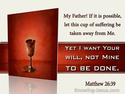 Matthew 26:39 Not My Will But Yours Be Done (windows)10:10