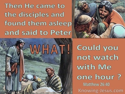 Matthew 26:40 They Were Asleep : Could You Not Watch With Me One Hour (brown)