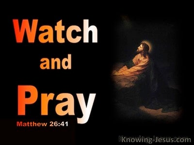 Matthew 26:41 Watch and pray, that ye enter not into temptation (brown)