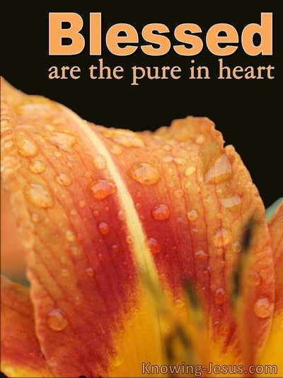 Matthew 5:8 Pure In Heart (devotional)04-07 (orange)
