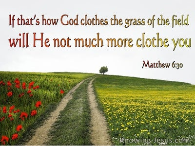 Matthew 6:30 If God So Clothe The Grass Of The Field (red)