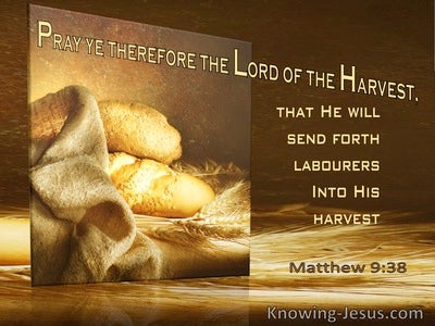Matthew 9:38 Pray Ye Therefore The Lord Of The Harvest Will Send Labourers (utmost)10:16