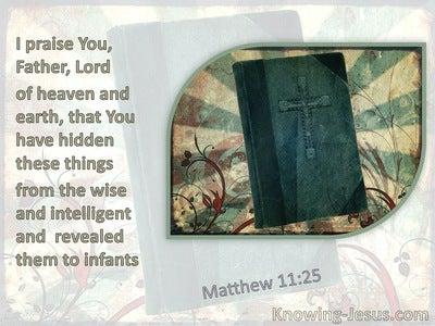 Matthew 11:25 And Hast Revealed Them Unto Babes (sage)