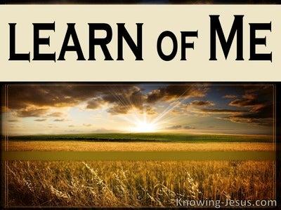 Matthew 11:29 Learn Of Me (beige)