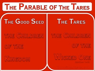 Matthew 13:38 The Field Is The World (red)
