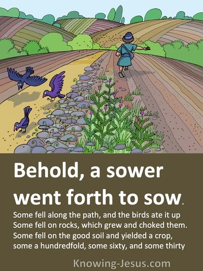 Matthew 13:4 to 8 A Sower Went Forth To Sow (brown)