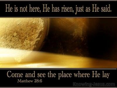 Matthew 28:6 He Is Not Here He Is Risen (black)