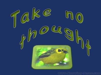 Matthew 6:25 Take No Thought (blue)