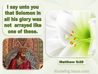 Matthew 6:29 Solomon Was Not Arrayed Like These (green)