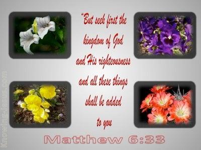 Matthew 6:33 Seek First The Kingdom (gray)