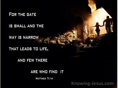 Matthew 7:14 The Gate Is Small And The Way Is Narrow  (brown)