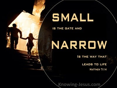 Matthew 7:14 The Gate Is Small And The Way Is Narrow  (orange)