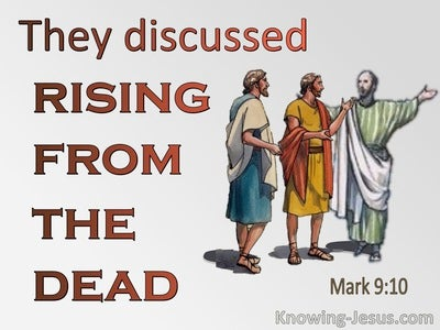 Mark 9:10 They Discussed What Rising From The Dead Meant (brown)