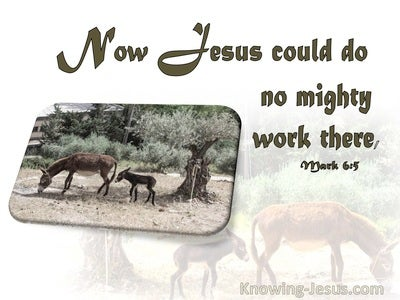 Mark 6:5 He Could Do No Miracle There (brown)