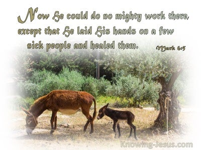 Mark 6:5 He Could Do No Miracle There (sage)