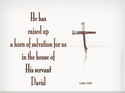 Luke 1:69 He Raised Up A Horn of Salvation (white)