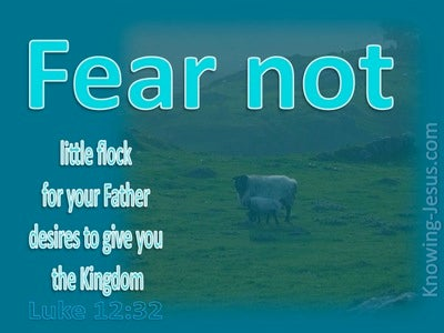 Luke 12:32 Fear Not Little Flock (aqua)