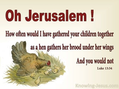 Luke 13:34 As A Hen Gathers Her Brood Under Her Wing (beige)