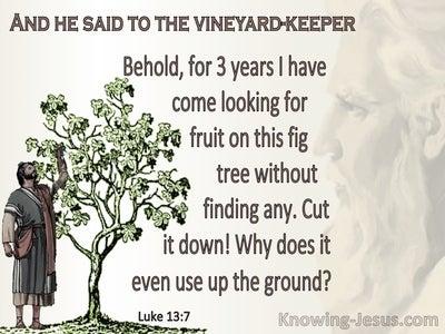 Luke 13:7 Inspirational Images