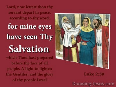 Luke 2:30 Mine Eyes Have Seen Your Salvation (red)