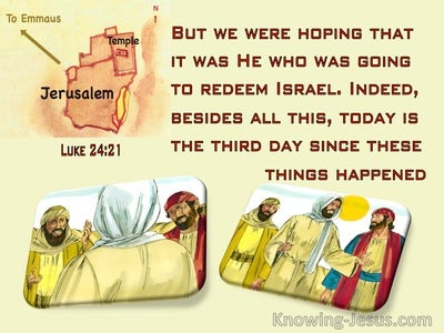 Luke 24:21 We Were Hoping He Was Going To Redeem Israel (yellow)