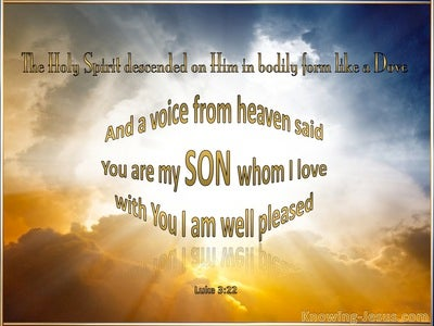Luke 3:22 You Are My Beloved Son (gold)