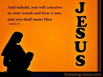 Luke 1:31 You WIll Call His Name Jesus (orange)