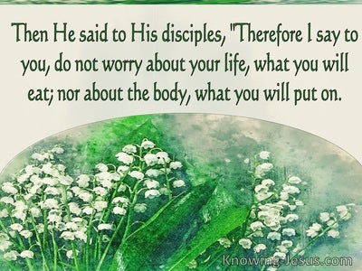 Luke 12:22 Do Not Worry About Your Life  What You Eat Or Drink (green)