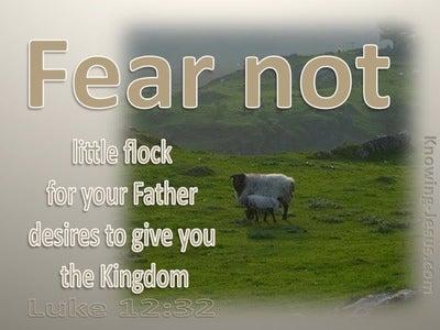 Luke 12:32 Fear Not Little Flock (beige)
