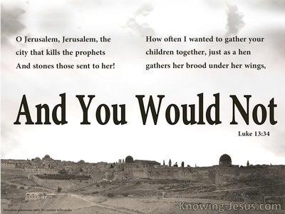 Luke 13:34 Jerusalem Jerusalem (brown)