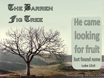 Luke 13:6 The Barren Fig Tree : He Found No Fruit (sage)