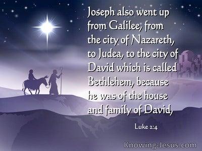 Luke 2:4 Joseph Also Went Up From Galilee (purple)