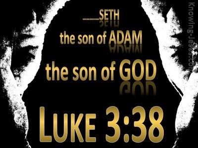 Luke 3:38 Son of Adam Son of God (black)