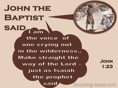 John 1:23 The Voice Of One Crying In The Wilderness (brown)
