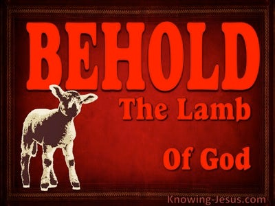 Behold The Lamb Of God (devotional) (red) - John 1-29