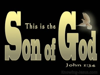 John 1:34 This Is The Son Of God (gold)