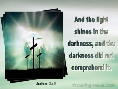 John 1:5 The Light Shines In The Darkness And The Darkness Did Not Comprehent It (sage)