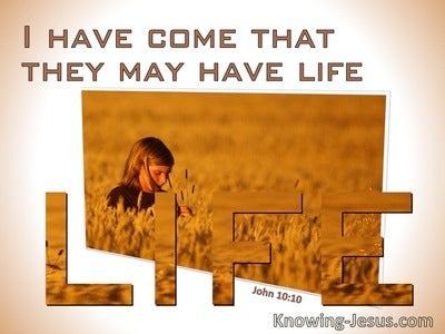 John 10:10 I Have Come That They Might Have Life (windows)02:16