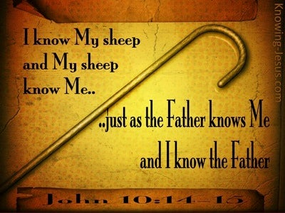 John 10:14 I Know My Sheep And My Sheep Know Me (brown)
