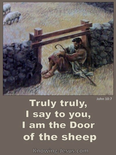 John 10:7 Jesus Said I Am The Door Of The Sheep (brown)