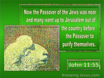 John 11:55 The Passover Of The Jews : To Purify Themselves (green)