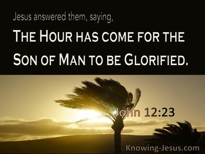 John 12:23 The Hour Has Come (brown)