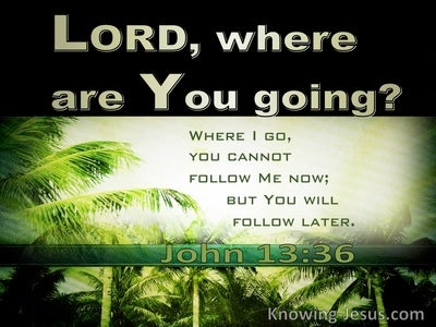 John 13:36 Where Are You Going (green)