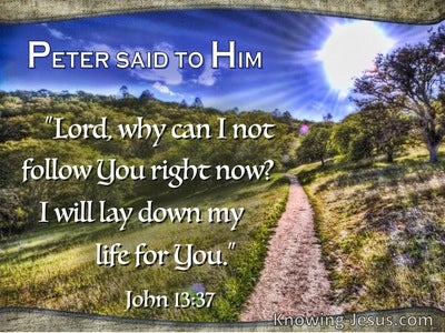 John 13:37  Peter Said, Why Cant I Follow You (blue)
