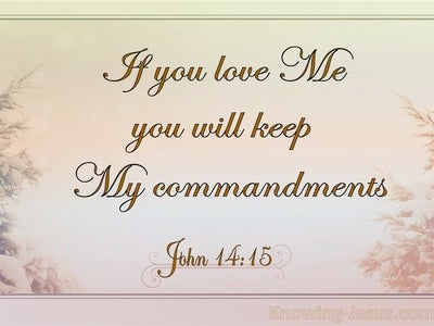 John 14:15 In You Love Me Keep My Commandments (pink)